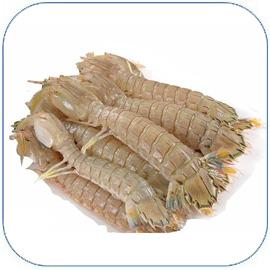 皮皮虾是网红海鲜之一,皮皮虾的做法大全,皮皮虾怎么做好吃