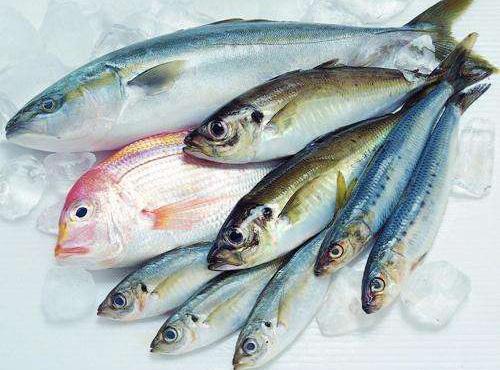孕妇可以吃海鲜吗?孕妇食谱可以吃哪些海鲜